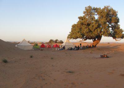 Kamperen sahara Marokko