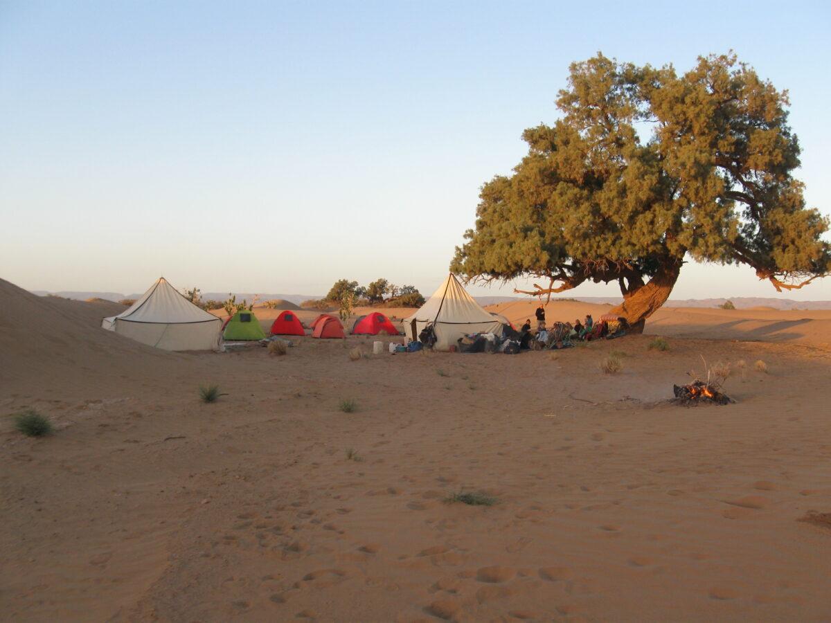 sahara_desert_camping_tents