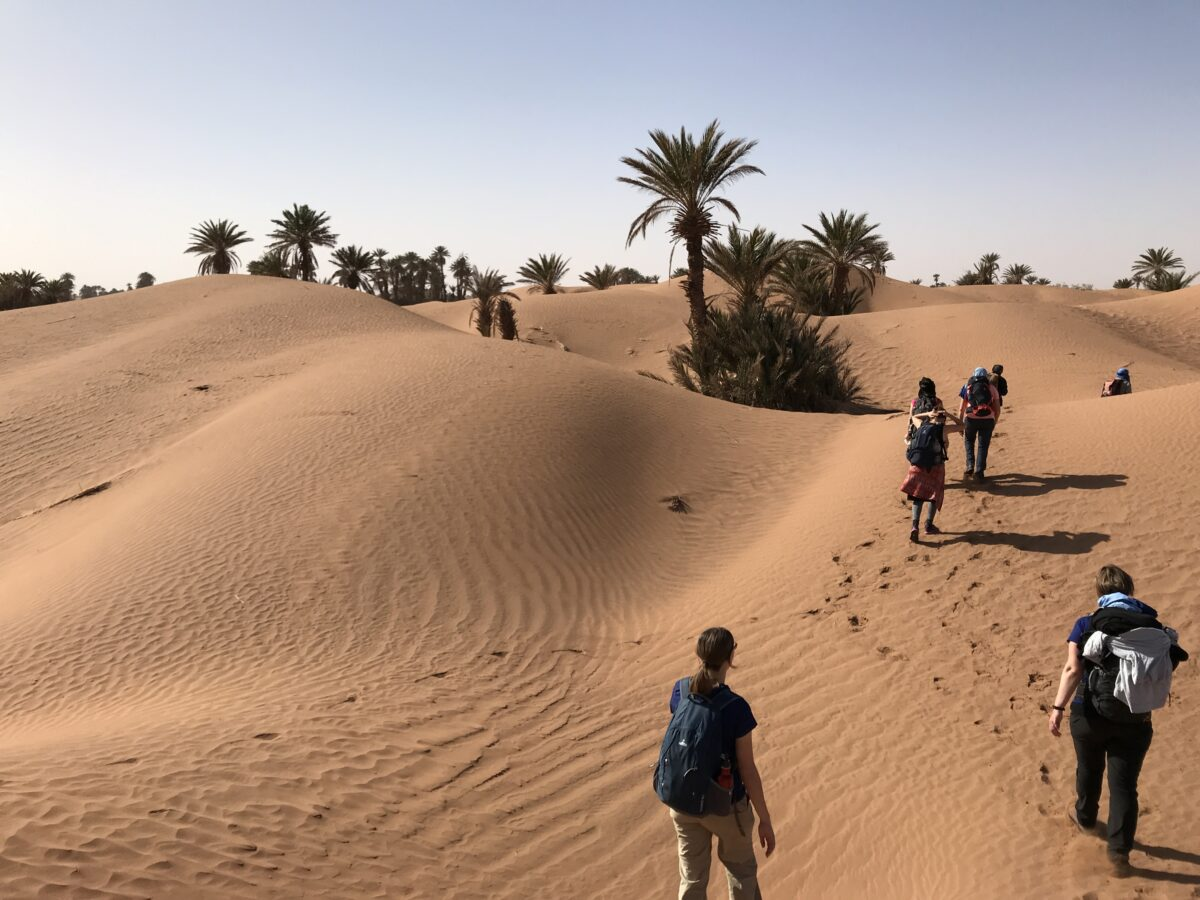 stilte van de sahara