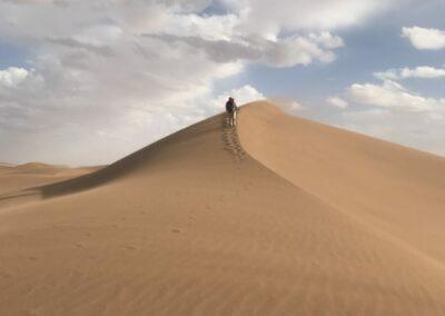 Sahara ResetT